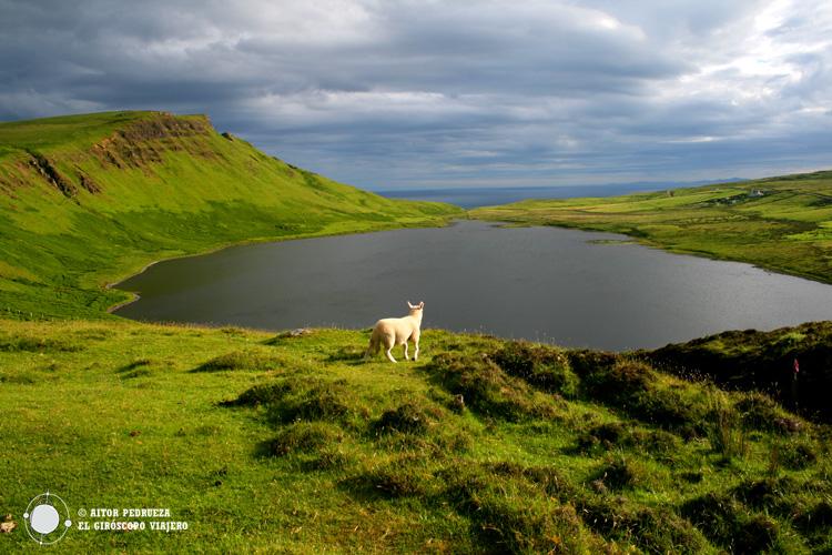 Naturaleza plena en la isla de Skye